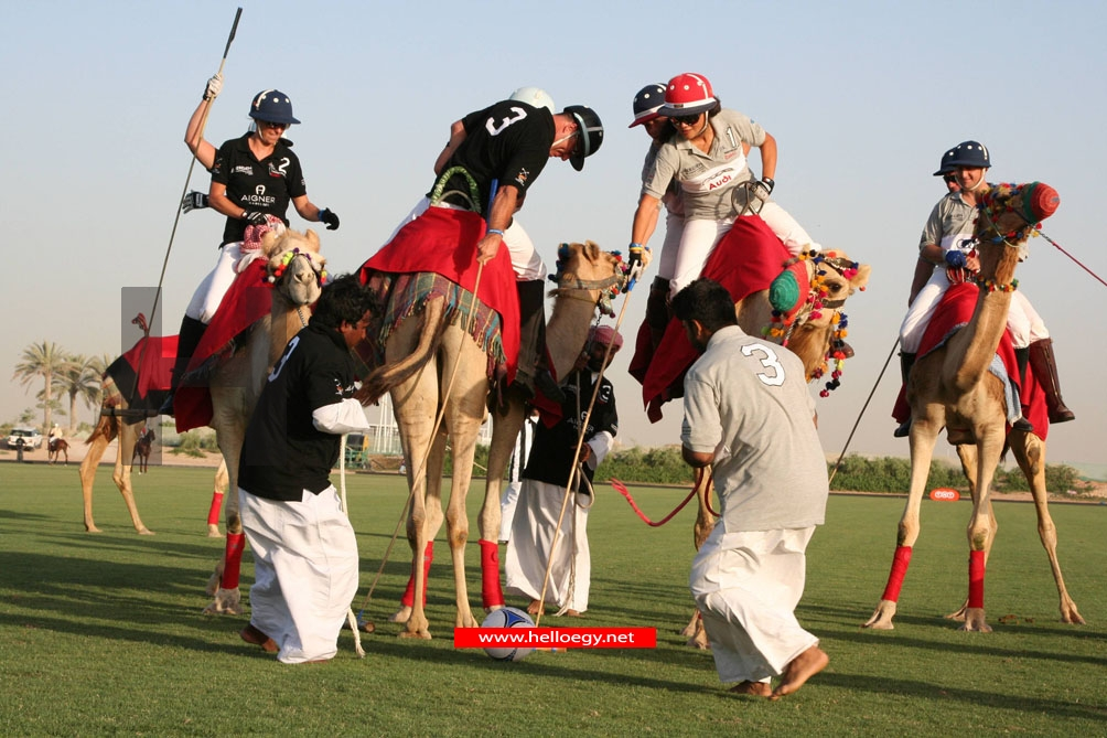 Sheik, rattle & roll in Dubai, the Middle Eastern city that does fun with a capital F